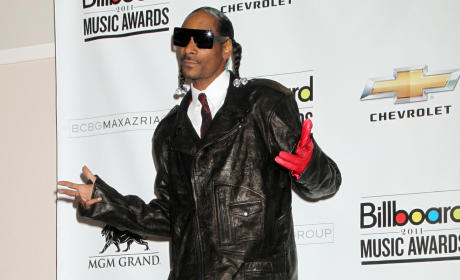 Snoop Dogg Arrested on Gun, Drug Possession