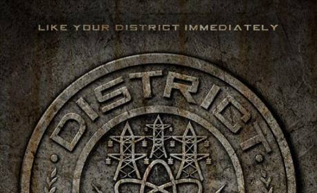 The Hunger Games District Badges: Revealed!