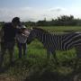 Shannen Doherty Pets a Zebra