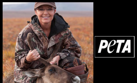 PETA Lambasts Hunting, Sarah Palin's Alaska