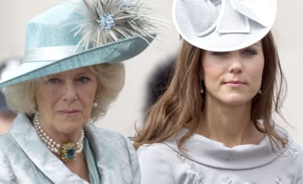 Will and Kate Get The Crown! Camilla Deemed Too Drunk To Rule!