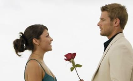 DeAnna Pappas Sounds Off On Brad Womack, Bachelor