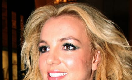 Britney Spears Tweets Condolences to Fallen Fan