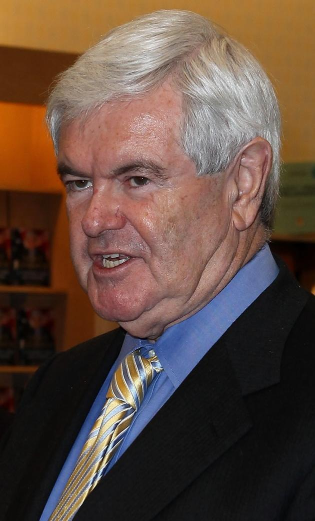 Newt Gingrich Picture
