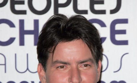 Charlie Sheen and Brooke Mueller Divorce Documents, Details: Revealed