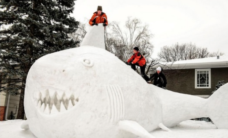Minnesota Family Constructs GIANT Snow Shark on Lawn: See the Pics!