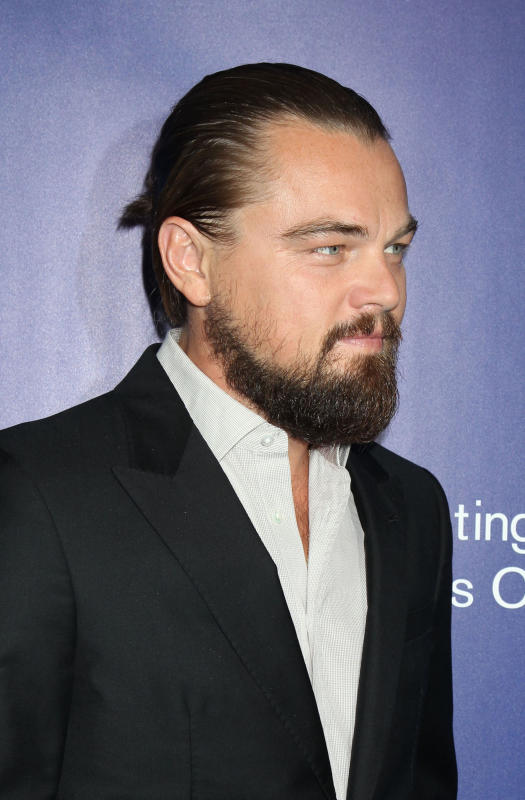 Leonardo dicaprio red carpet photo