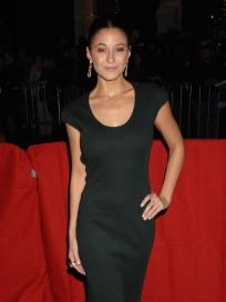 Emmanuelle Chriqui Pic