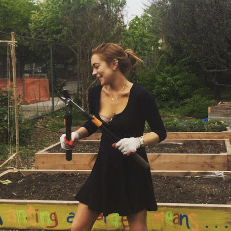 Lindsay Lohan Community Service Photo