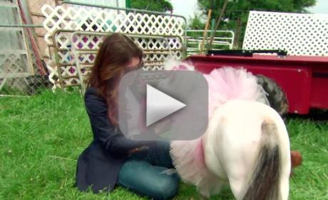 The Real Housewives of Beverly Hills Season 6 Episode 3 Recap: Horsing Around