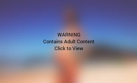 Alessandra Ambrosio Pregnant Bikini Pic