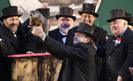 Groundhog Day 2015 Prediction: SHADOW! Winter to Continue, Punxsutawney Phil Declares!
