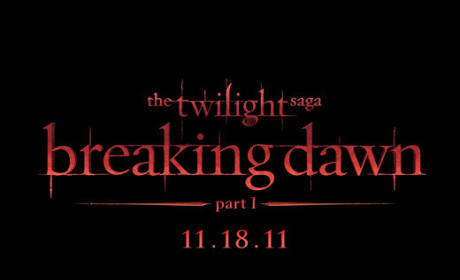 Breaking Dawn Movie Logo: Revealed!