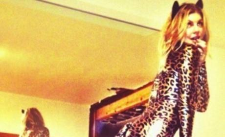 Kim Kardashian vs. Fergie: Clash of the Cats!