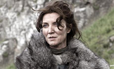 Michelle Fairley as Catelyn Stark