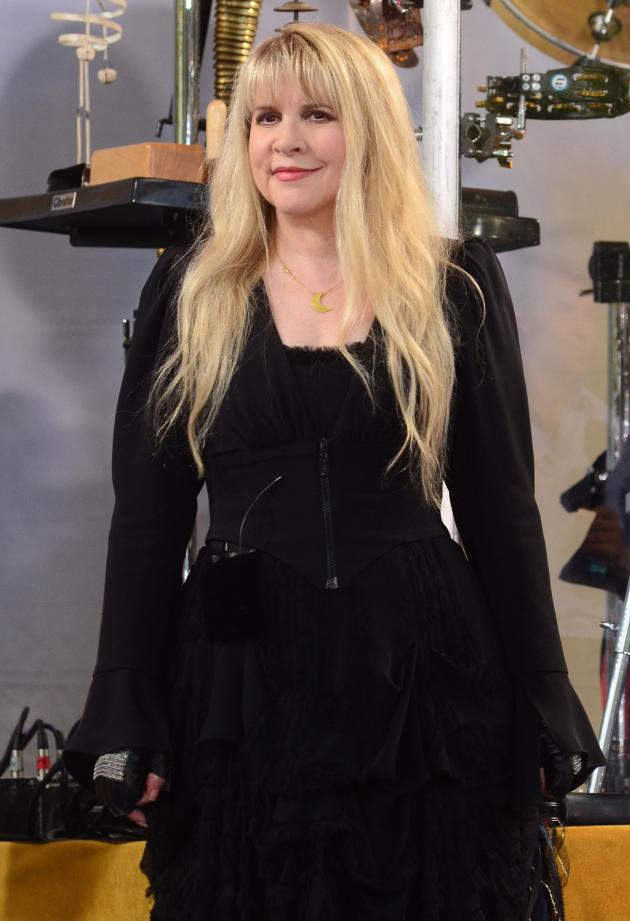 Stevie Nicks Picture