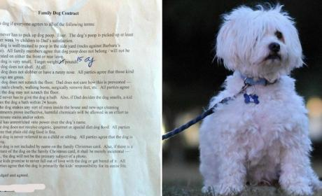 Dad Makes Children Sign Detailed Dog Contract