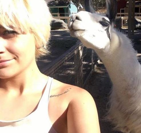 Paris Jackson With a Llama