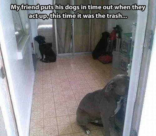 In a timeout.