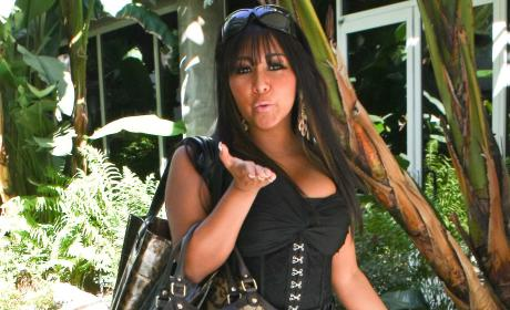 Snooki Offered Job as Porn Spokeswoman