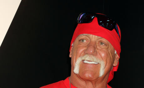 Hulk Hogan Rules?