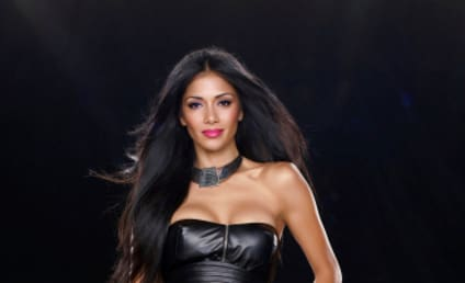 Nicole Scherzinger and Steve Jones: Starring in The Sex Factor?
