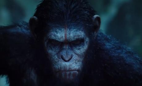 Dawn of the Planet of the Apes Trailer: Released!