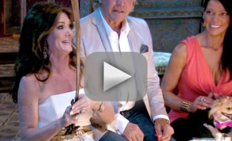 The Real Housewives of Beverly Hills Season 4 Episode 17 Recap: Everyone Hates Lisa