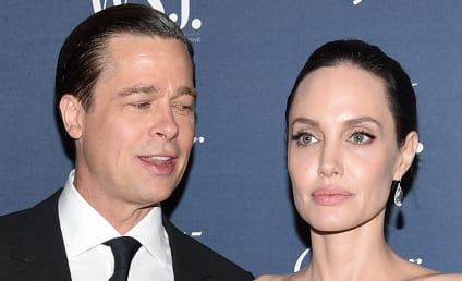 "Brad Pitt ""Married a Lunatic"" & ""Lives on Whiskey,"" Celebrity Sources Say"