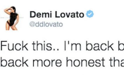 Demi Lovato Takes Twitter Break