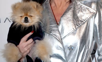 Really?!? Lisa Vanderpump's Dog Tweets Sadness Over Russell Armstrong