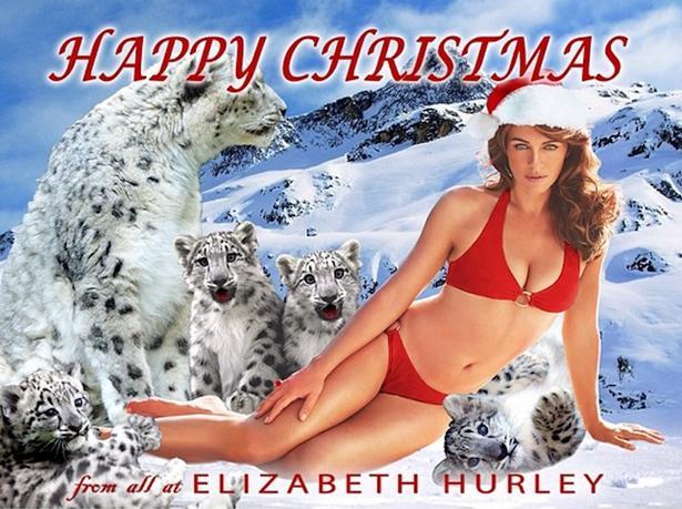 Elizabeth hurley