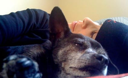 """Sarah Silverman Pens """"Obituary Type Thing"""" for Dog, Makes us Cry"""