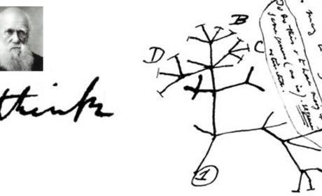 Charles Darwin: Wrong on Tree of Life?