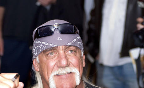 Hulk Hogan Identifies Heather Clem as Sex Tape Partner, Criticizes Own Performance
