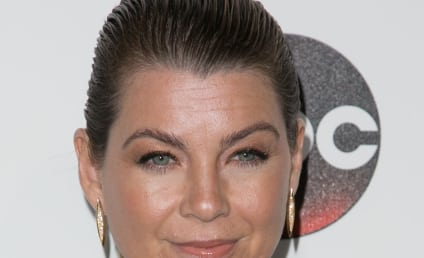 Grey's Anatomy, Indeed: Ellen Pompeo Nude