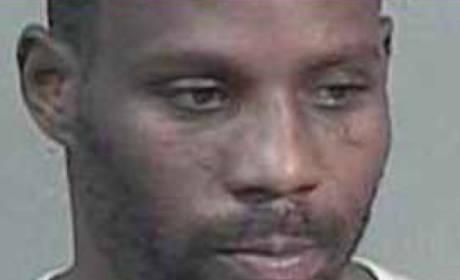 DMX: Three Cases, Four Guilty Pleas, One More Mug Shot!