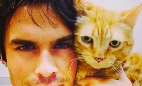 Ian Somerhalder Shares Cat Photo, Kicks Off The Vampire Diaries Season 6