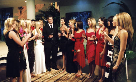 The 17 Most Shocking Moments in Bachelor History: What's #1?!