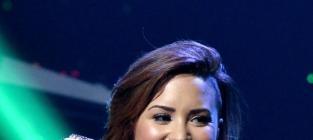 Demi Lovato Responds to 'Fatty' Tweet