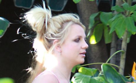 Britney Spears Finds Comfort in Booze, Alli Sims