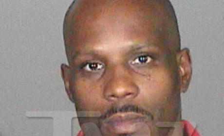 DMX Arrested For Approximately 397th Time