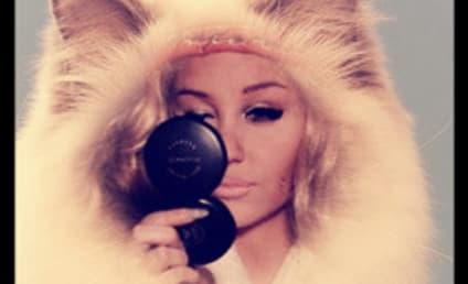 Amanda Bynes Denied By Private Jet For Lack of ID, Tells Pilot to Google Amanda Bynes