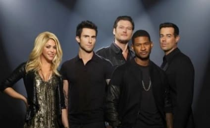 The Voice Season 4 Premiere: Did You Watch? What Did You Think?