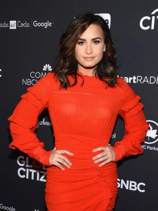 Demi Lovato Works the Red Carpet