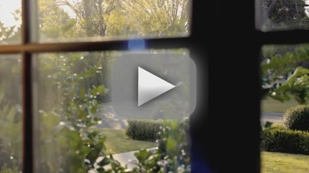 Volkswagen Super Bowl Ad - The Dog Strikes Back (Ft. Darth Vader)