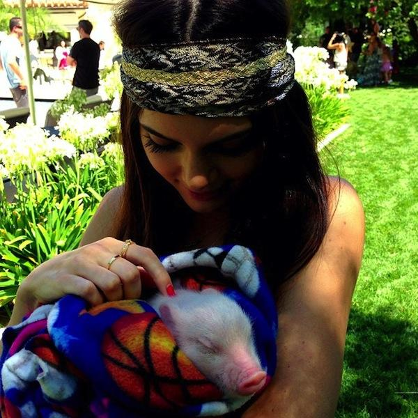 Kendall Jenner with a Pig