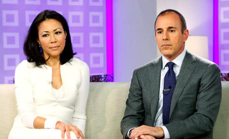 Report: Matt Lauer Solely Responsible for Ann Curry Today Show Firing