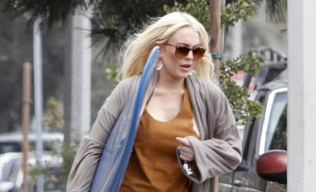 Dina Lohan Blames Celebrity News Reporters for Daughter's Downfall