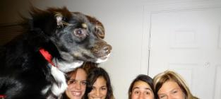 23 Dogs Who Have Mastered the Art of Photobombing